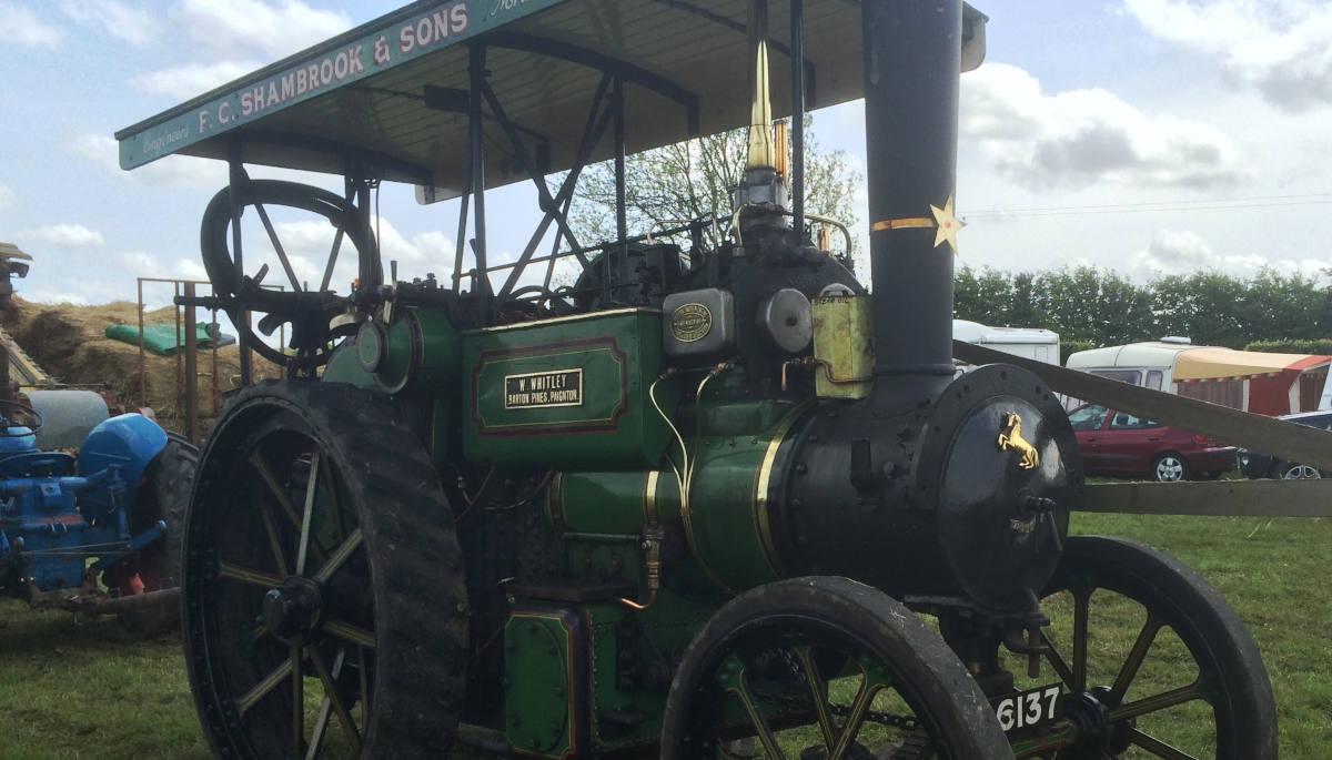 Shamrock & Sons Steam Engine
